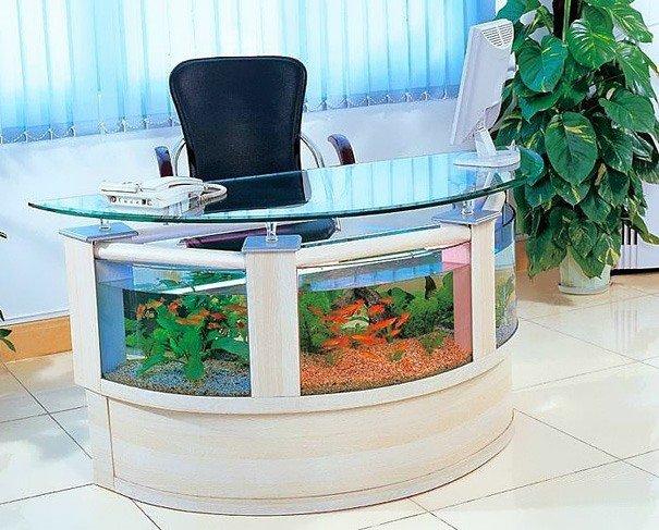 acquario da ufficio