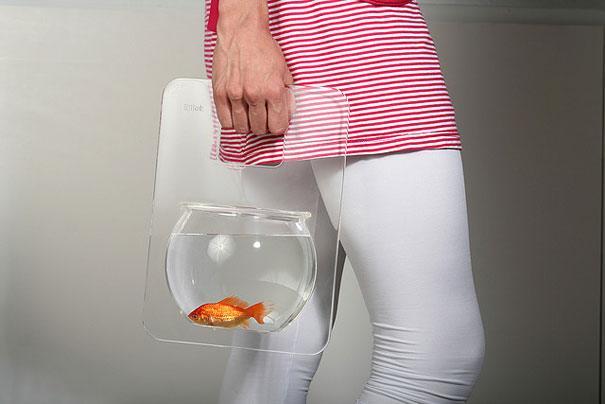 acquari strani e inusuali