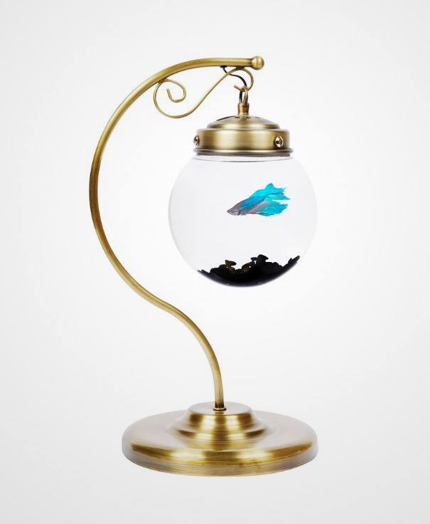 acquario a lampada