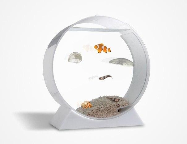 acquari geniali