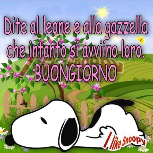 Snoopy buongiorno