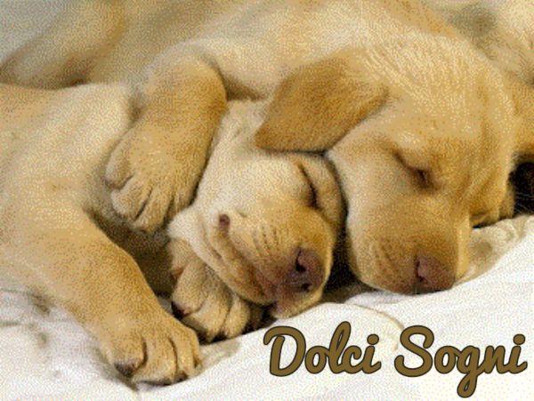 immagini-buonanotte-dolci