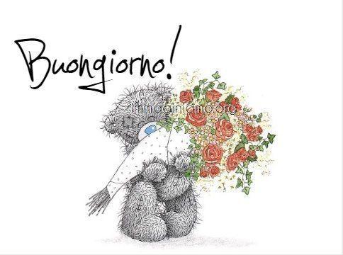 buongiorno orso con rose