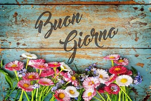 Buongiorno con fiori colorati