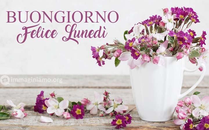 Immagini di auguri fiori lunedì