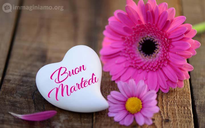 buon martedi cuore fiore