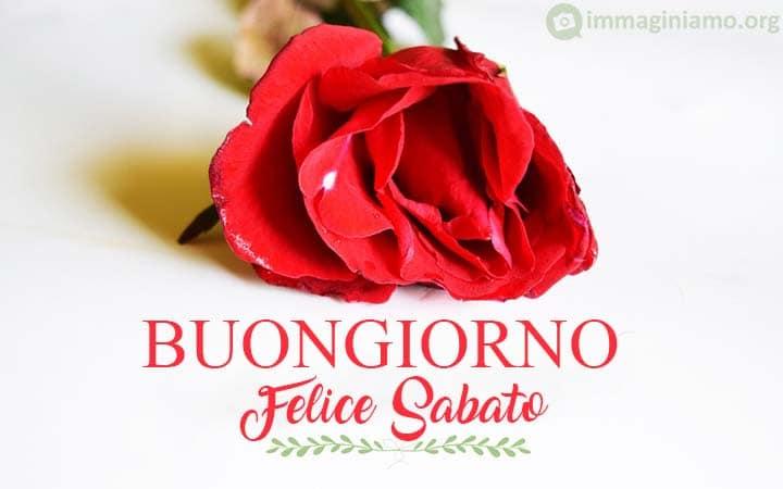 Immagine Buongiorno felice sabato rosa
