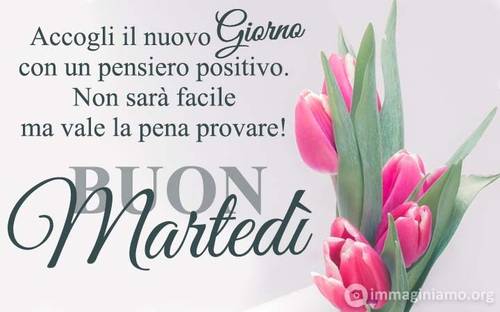 View all posts in Martedì