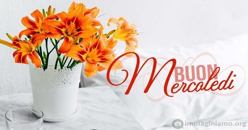 Buon Mercoledì fiori