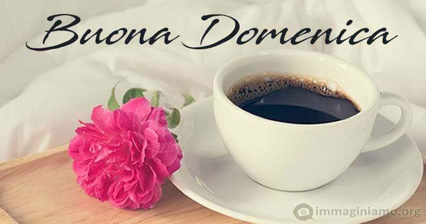 Buona Domenica fiori e caffè