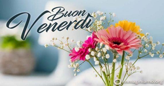 Buon venerdì con fiori colorati