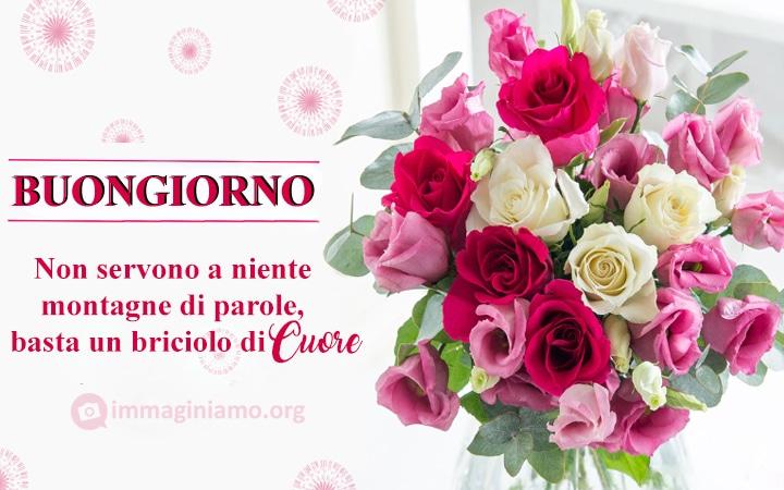 Buongiorno immagini con fiori e frasi belle