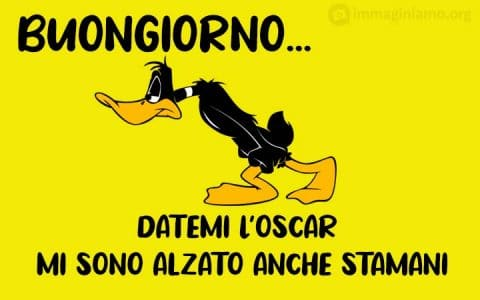 Daffy Duck buongiorno divertenti