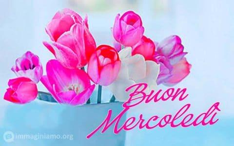 Immagini belle buon mercoledì con fiori